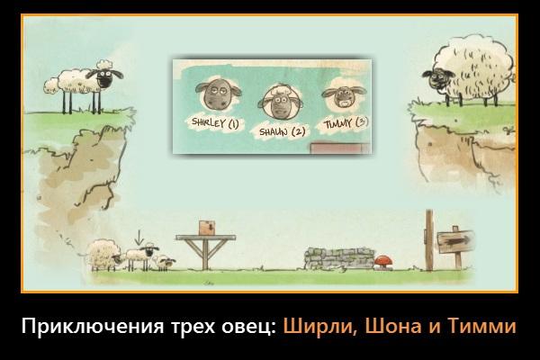 Приключения трёх овец